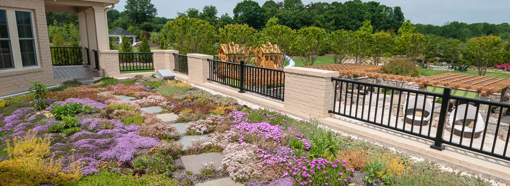 5 Benefits of a Green Roof (In Addition To Environmental Friendliness)